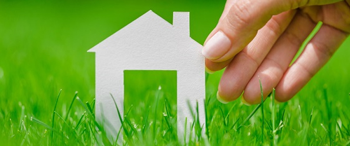 House_cutout_in_grass_-_guest_proposal